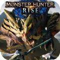 怪物猎人rise数字版